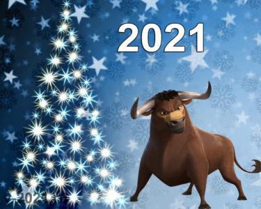 Как встретить 2021 год чтобы сделать его удачным